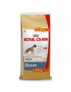 Royal Canin Boxer Adult