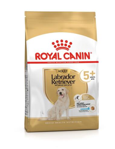 Royal Canin Labrador Retriever 5+ | Cães | Royal Canin
