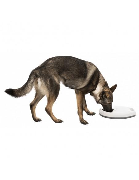Comedouro Automático TX5 | Cães | Trixie