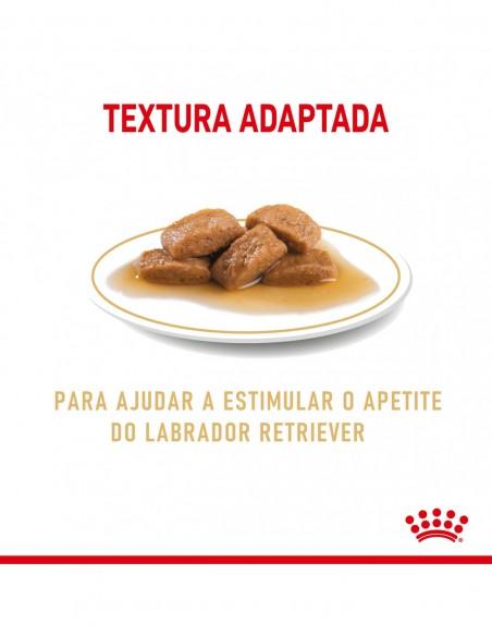 Royal Canin Labrador Adulto, Alimento Húmido | Ração Húmida para Cães | Royal Canin