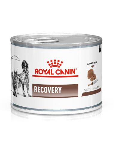 Royal Canin Diet Recovery   Ração Medicamentosa para Cães   Royal Canin Veterinary