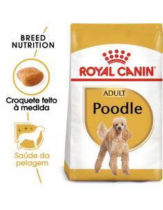 Royal Canin Poodle, Alimento Seco Cão