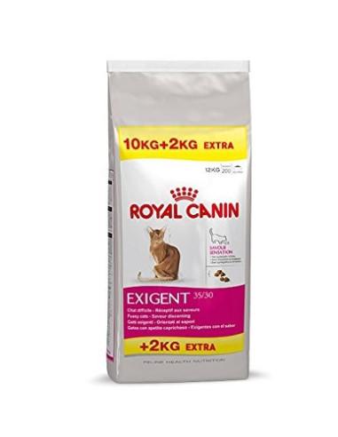 Royal Feline Exigente 10+2kg Grátis | Ração Gatos Sensíveis | Royal Canin