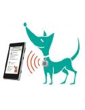 Medalha Pet Reqover Acessórios para Cães