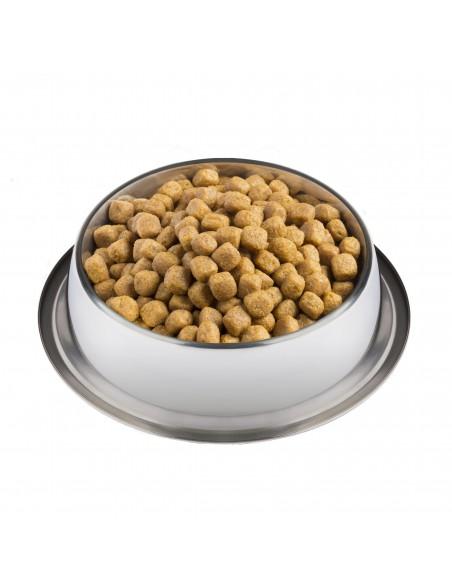 Pro Plan Diet Canin UR Urinary   Ração Urinary Cães   Purina Veterinary Diets