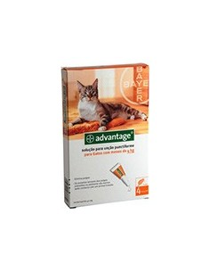 Advantage Gatos até 4kg Advantage Desparasitantes