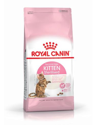 Royal Canin Kitten Sterilised Gato, Alimento Seco Royal Canin Gatos Esterilizados