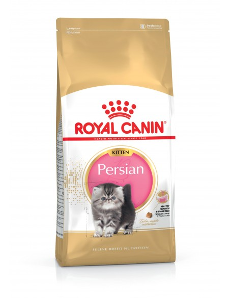 Royal Canin Kitten Persian Gato, Alimento Seco
