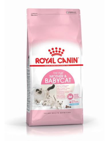 Royal Canin Mother e Babycat Gato, Alimento Seco Royal Canin Alimentação Seca