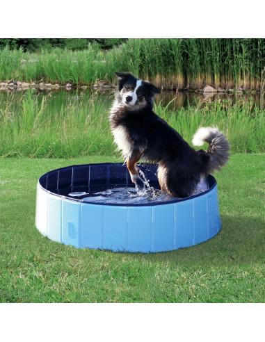 Piscina para Cães