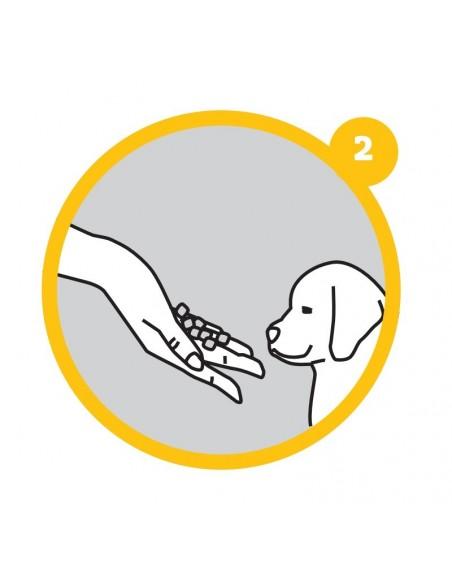 Bandeja sanitaria Puppy Training Set   Resguardos para Cães   Trixie