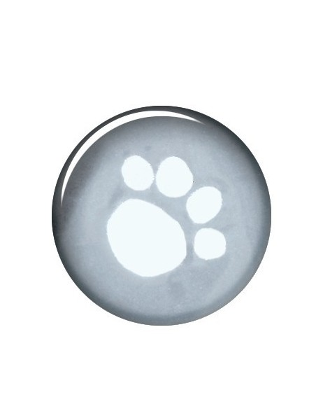 Fato de Chuva Tarbes Trixie Roupas para cães