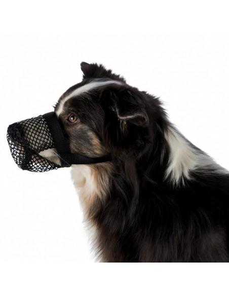 Proteção Anti-intoxicação, Poliester | Cães | Trixie