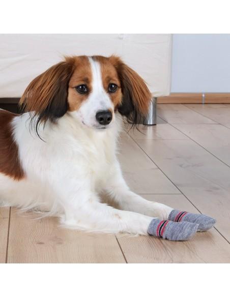 Meias para Cães Cinza Trixie Roupas para cães