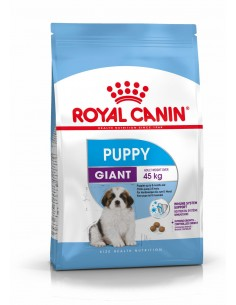 Royal Canin Giant Puppy, Alimento Seco Cão