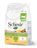 Schesir Bio Gato Adulto 400gr Shesir Alimentação Biológica
