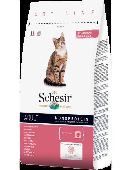 Schesir Dry Line Gato Adulto com Presunto