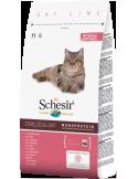 Schesir Dry Line Gato Sterilized e Light com Presunto