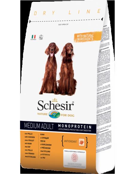 Schesir Dry Line Cão Medium Adult com Frango