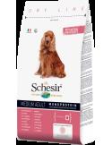 Schesir Dry Line Cão Medium Adult com Presunto Shesir Alimentação Seca para Cães