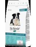 Schesir Dry Line Cão Medium Puppy com Frango Shesir Alimentação Seca para Cães