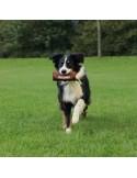 Preydummy Trixie Treinar Cães