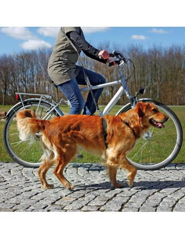 Trela para Bicicleta e Jogging