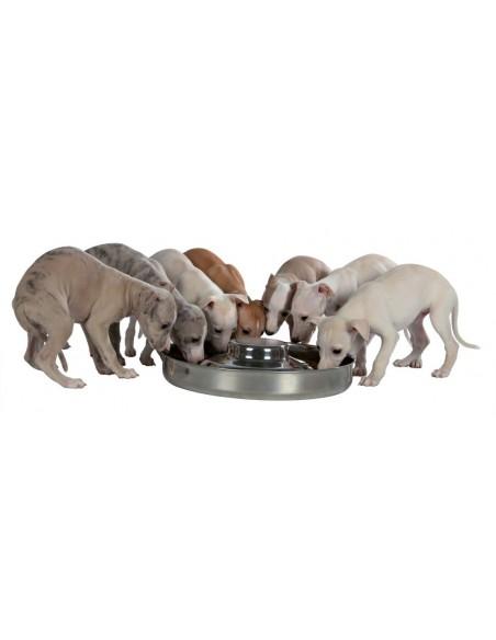 Gamela para Cachorros | Comedouro para cães | Trixie