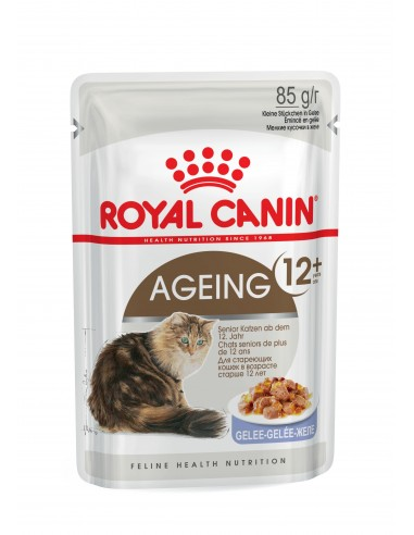 Royal Canin AGEING 12+ JELLY Gato, Alimento Húmido Royal Canin Alimentação Húmida para Gatos