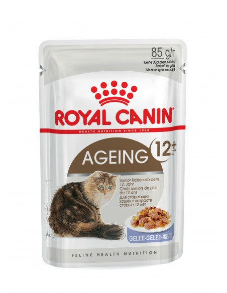 Royal Canin AGEING 12+ JELLY Gato, Alimento Húmido