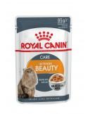 Royal Canin INTENSE BEAUTY JELLY Gato, Alimento Húmido Royal Canin Alimentação Húmida para Gatos
