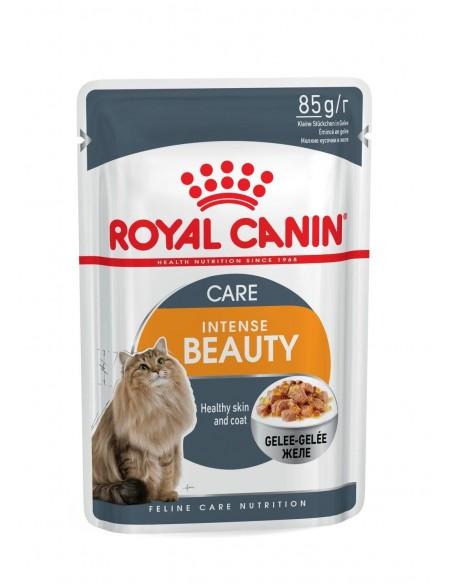 Royal Canin INTENSE BEAUTY JELLY Gato, Alimento Húmido