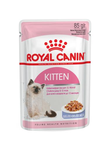 Royal Canin KITTEN Instinctive JELLY Gato, Alimento Húmido | Comida Húmida Gatos | Royal Canin