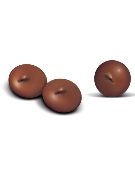 Bombons de Chocolate Trixie Vitaminas e Complementos