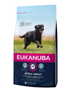 Eukanuba Adult Large 12kg Eukanuba Ração Seca para Cães