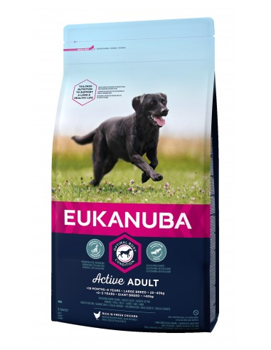 Eukanuba Adult Large 12kg Eukanuba Alimentação Seca para Cães