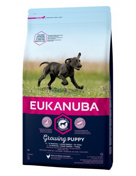 Eukanuba Puppy Large 12kg