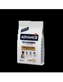 Advance Bulldog Francês Adulto Advance Affinity Alimentação Seca para Cães