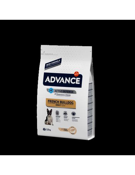 Advance Bulldog Francês Adulto