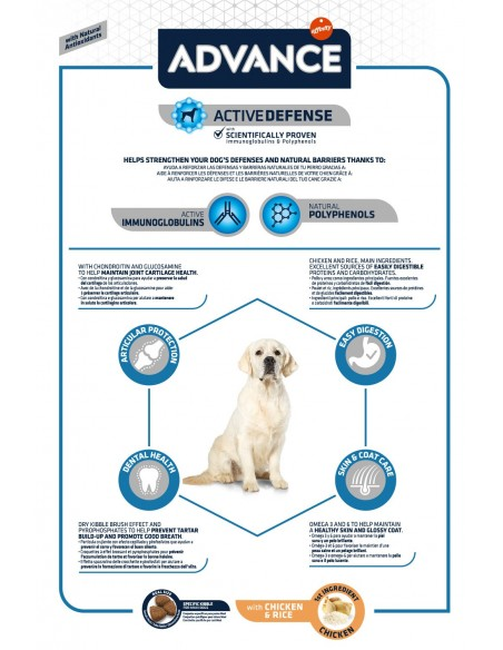 Advance Maxi Adulto Advance Affinity Ração Seca para Cães