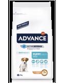 Advance Mini Puppy Advance Affinity Alimentação Seca para Cães