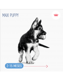 Royal Canin Maxi Puppy, Alimento Húmido