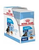 Royal Canin Maxi Puppy, Alimento Húmido Royal Canin Ração Húmida para cães