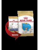 Royal Canin Bulldog Frances Junior Alimento Seco Cão Royal Canin Alimentação Seca para Cães