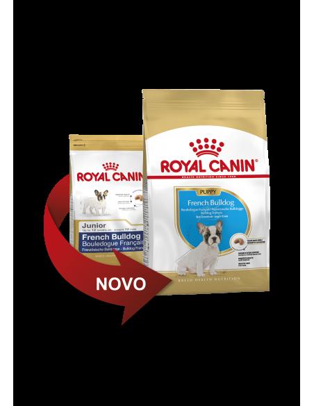 Royal Canin Bulldog Frances Junior Alimento Seco Cão Royal Canin Ração Seca para Cães