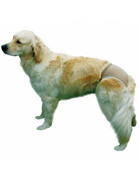 Cuecas para cães - slips de proteção   Adereços   Trixie