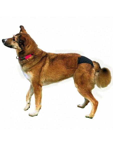 Cuecas para cães - slips de proteção | Adereços | Trixie