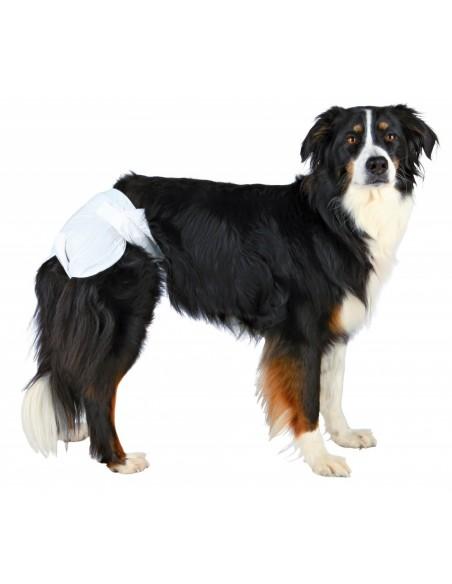 Fraldas Descartáveis para cadelas (12 unidades)