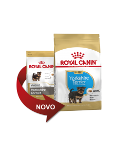 Royal Canin Yorkshire Junior, Alimento Seco Cão