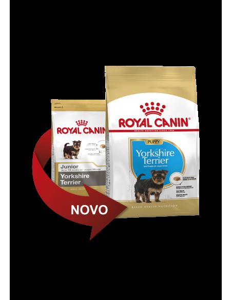 Royal Canin Yorkshire Junior, Alimento Seco Cão